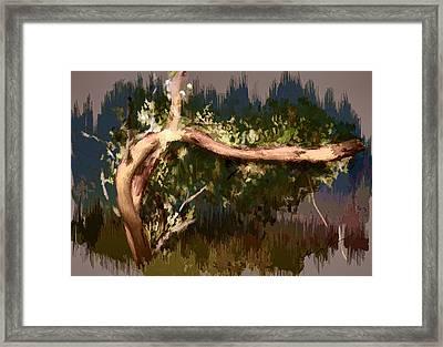 Framed Print featuring the digital art Snake Tree by Dale Stillman