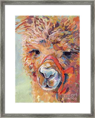 Snickers Framed Print by Kimberly Santini