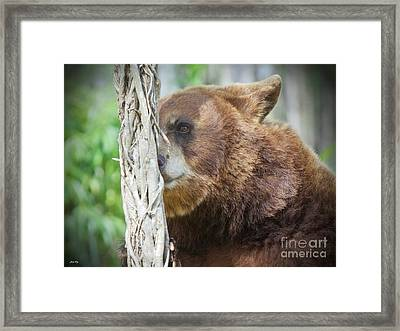 Sniffing Things Out Edition 2 Framed Print