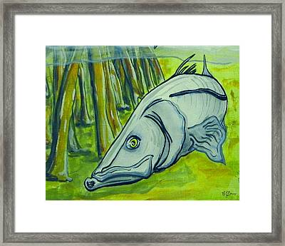 Snook Fish Framed Print by W Gilroy