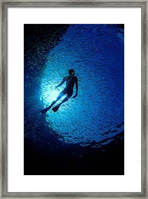 Snorkeler Framed Print