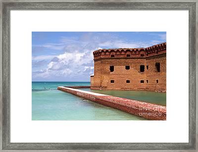 Snorkelers Fort Jefferson Framed Print