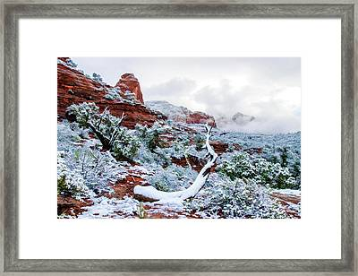 Snow 05-024 Framed Print