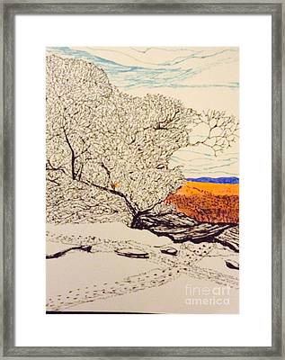 Snow Above The Desert  Framed Print by Ishy Christine Degyansky