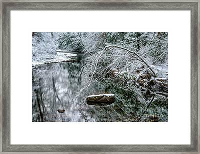 Snow Along Cranberry River Framed Print by Thomas R Fletcher