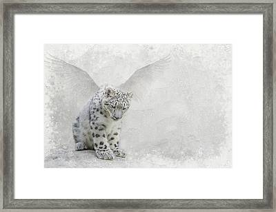 Snow Angel Framed Print