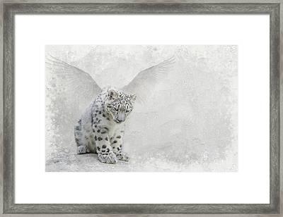 Snow Angel Framed Print
