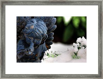 Framed Print featuring the photograph Snow Angel Whisperer by Shelley Neff