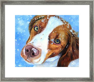 Snow Baby - Brittany Spaniel Framed Print by Lyn Cook