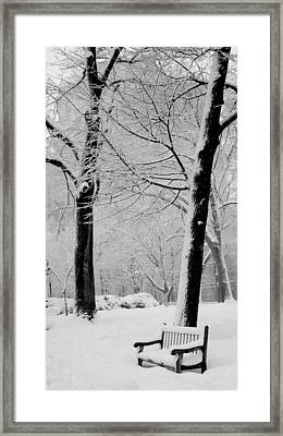 Snow Bench Framed Print by Andrew Dinh