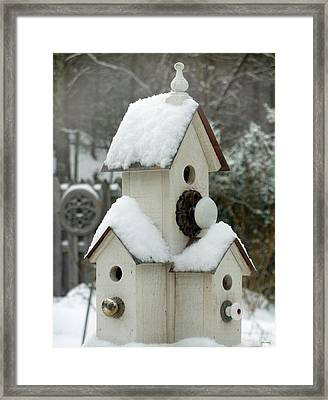 Snow Birds Framed Print