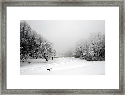 Snow Bound Framed Print