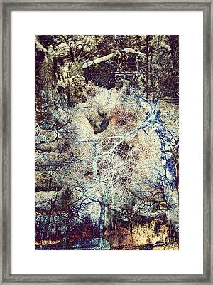 Snow Cabin Framed Print by Callan Percy