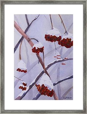 Snow Caps Framed Print by Debbie Homewood