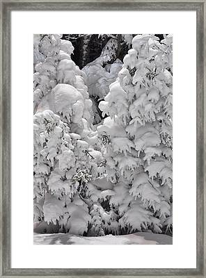 Framed Print featuring the photograph Snow Coat by Alex Grichenko