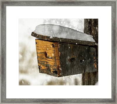 Snow Cover Framed Print by Sherman Perry