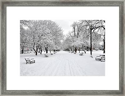 Snow Covered Benches And Trees In Washington Park Framed Print