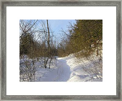 Snow Covered Pathway Framed Print by Richard Mitchell