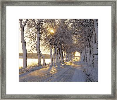 Snow Covered Road Framed Print by Panoramic Images