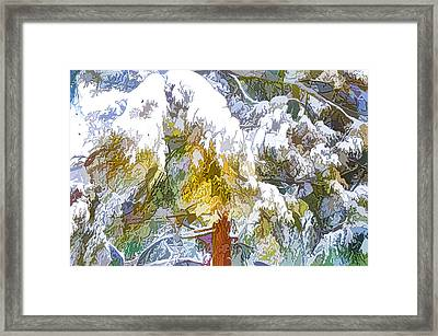 Snow-covered Tree Branch 1 Framed Print