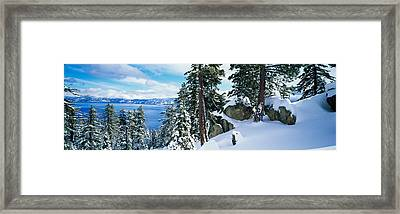 Snow Covered Trees On Mountainside Framed Print