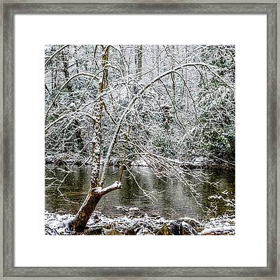 Framed Print featuring the photograph Snow Cranberry River by Thomas R Fletcher