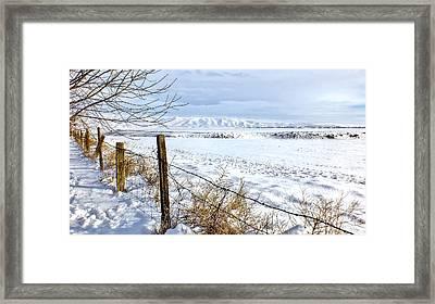 Snow Crossing Framed Print by Brad Stinson
