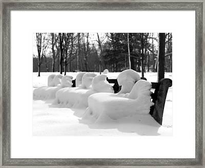 Snow Cushions Framed Print by Freda Sbordoni