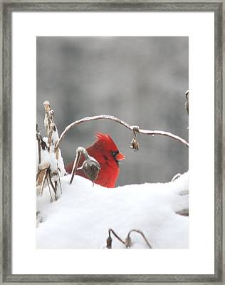 Snow Day II Framed Print