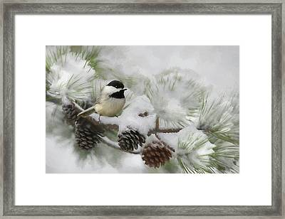 Framed Print featuring the photograph Snow Day by Lori Deiter