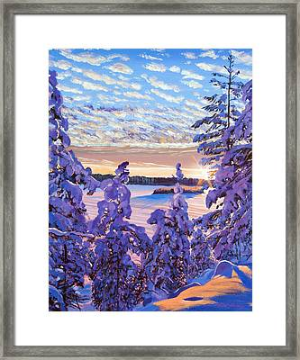 Snow Draped Pines Framed Print by David Lloyd Glover
