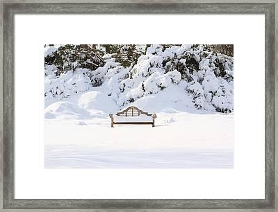 Snow Dwarfed Bench Framed Print