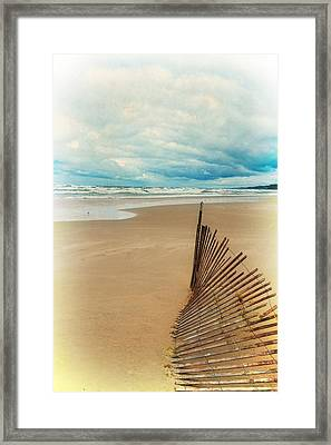 Snow Fence And Seagulls Framed Print by Michelle Calkins