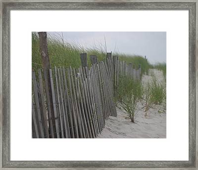 Snow Fence Framed Print by Carla Neufeld