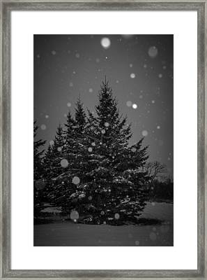 Framed Print featuring the photograph Snow Flakes by Annette Berglund