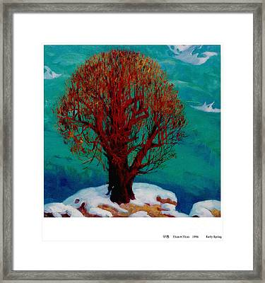 Snow Flame Framed Print by Xichang Sun