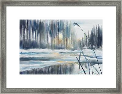 Snow From Yesterday Framed Print