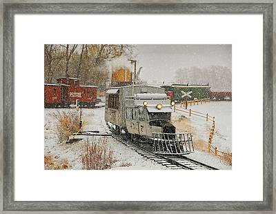 Framed Print featuring the photograph Snow Goose by Ken Smith