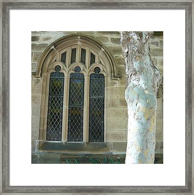 Snow Gum And St Andrews Cathedral Framed Print by Adrianne Wood