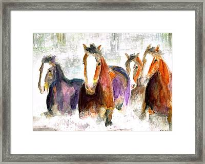 Snow Horses Framed Print by Frances Marino