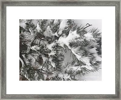 Snow In February Framed Print