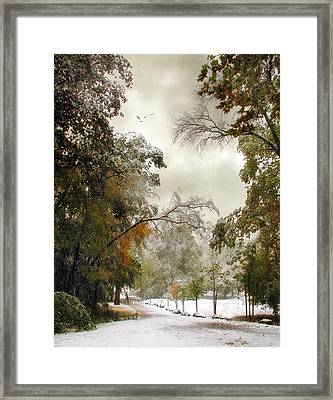 Snow Kissed Framed Print by Jessica Jenney