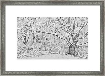 Snow On An Old Ash Tree Framed Print by Janice Petrella-Walsh