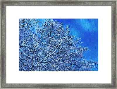 Framed Print featuring the photograph Snow On Branches Photo Art by Sharon Talson
