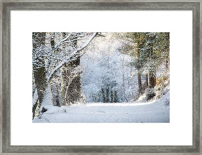 Snow On The Chase Framed Print
