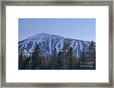 Snow On The Loaf Framed Print
