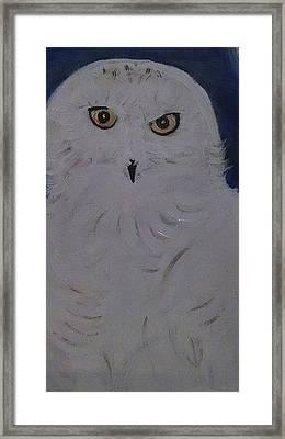 Snow Owl Framed Print
