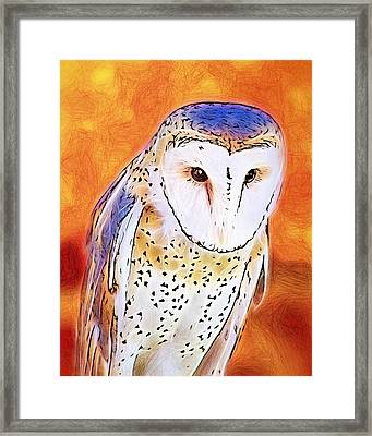 Framed Print featuring the digital art White Face Barn Owl by Tracie Kaska
