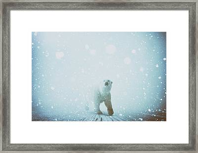 Snow Patrol Framed Print