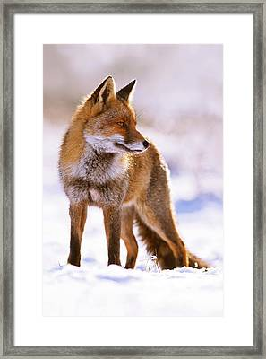 Snow Princess Framed Print by Roeselien Raimond